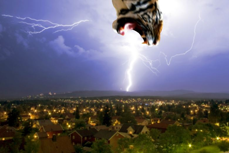 Tiger Lightning Header