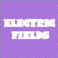 Electric Fields Header