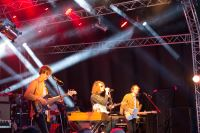 Blissfields 2013 Image 11
