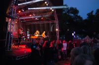 Blissfields 2013 Image 14