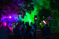 Blissfields 2013 Image 27