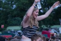 Blissfields 2013 Image 5