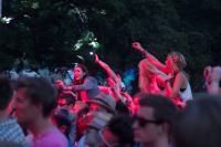 Blissfields 2013 Image 7