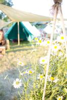 Blissfields 2013 Image 72