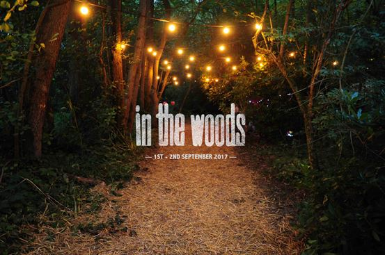 In The Woods Logo Banner